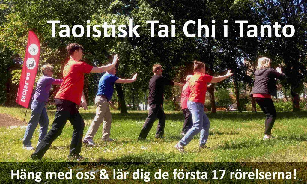 Tai chi i parken - Tantolunden
